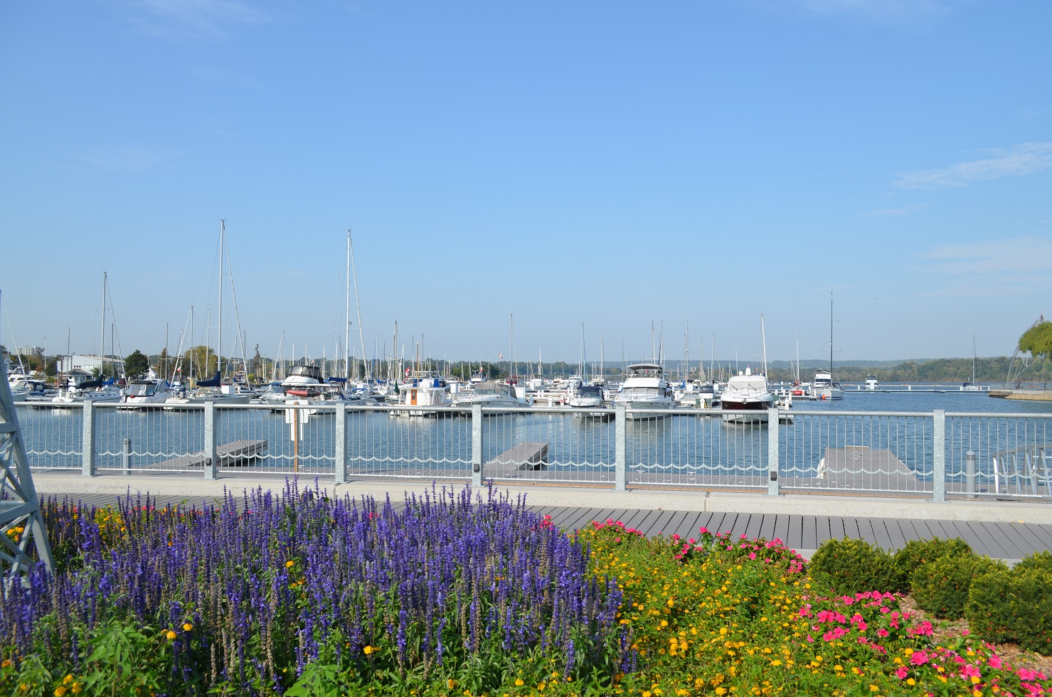 Harbour West Marina Hamilton